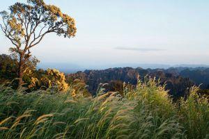 Phou-Hin-Poun-National-Biodiversity-Conservation-Area-Khammouane-Laos-001.jpg