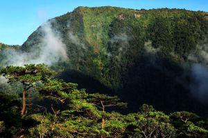 Phu-Luang-Wildlife-Sanctuary-Loei-Thailand-002.jpg