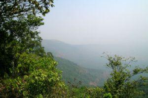 Phu-Luang-Wildlife-Sanctuary-Loei-Thailand-004.jpg