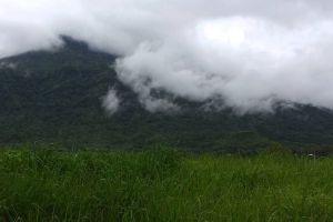 Phu-Luang-Wildlife-Sanctuary-Loei-Thailand-006.jpg