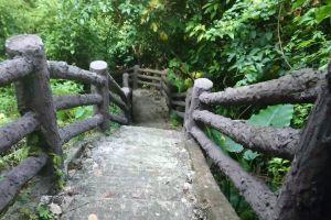 Phu-Pha-Lom-Forest-Park-Loei-Thailand-03.jpg