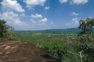 Phu-Sa-Dok-Bua-National-Park-Mukdahan-Thailand-05.jpg