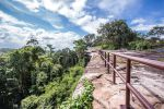 Phu-Sing-Phu-Pha-Phung-Forest-Park-Amnat-Charoen-Thailand-02.jpg