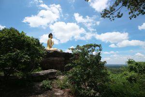 Phu-Sing-Phu-Pha-Phung-Forest-Park-Amnat-Charoen-Thailand-04.jpg