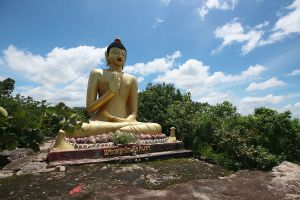 Phu-Sing-Phu-Pha-Phung-Forest-Park-Amnat-Charoen-Thailand-05.jpg