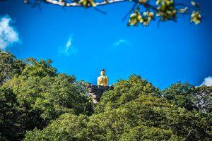 Phu-Sing-Phu-Pha-Phung-Forest-Park-Amnat-Charoen-Thailand-07.jpg