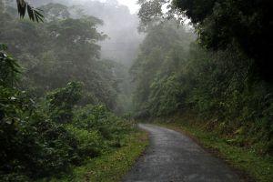 Phu-Xai-Lai-Leng-Xiangkhoang-Laos-004.jpg