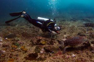 Princess-Divers-Phi-Phi-Krabi-Thailand-002.jpg