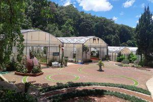 Queen-Sirikit-Botanic-Garden-Chiang-Mai-Thailand-03.jpg