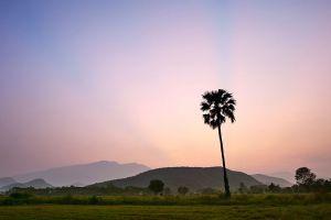 Ramkhamhaeng-National-Park-Sukhothai-Thailand-002.jpg