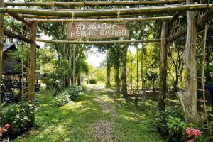 River-Kwai-Resotel-Kanchanaburi-Thailand-Herbal-Garden.jpg