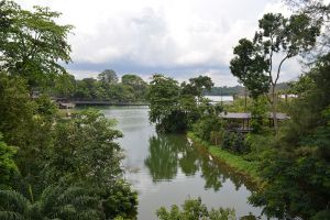 River-Safari-Singapore-003.jpg