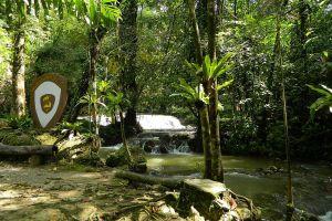Sa-Nang-Manora-Forest-Park-Phang-Nga-Thailand-01.jpg