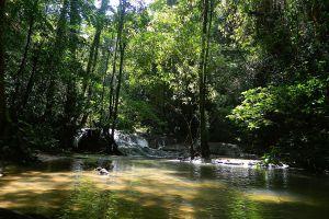 Sa-Nang-Manora-Forest-Park-Phang-Nga-Thailand-04.jpg