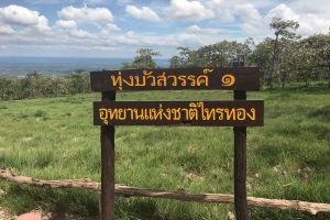 Sai-Thong-National-Park-Chaiyaphum-Thailand-03.jpg