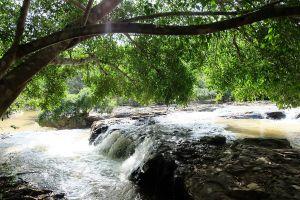 Sai-Thong-National-Park-Chaiyaphum-Thailand-06.jpg