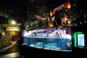 Sea-Life-Ocean-World-Bangkok-Thailand-06.jpg