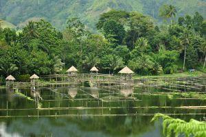 Sebu-Lake-South-Cotabato-Philippines-005.jpg