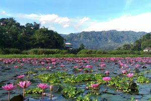Sebu-Lake-South-Cotabato-Philippines-007.jpg