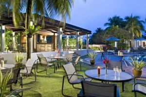 Sheraton-Towers-Hotel-Orchard-Singapore-Garden.jpg