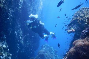 Silent-Divers-Samui-Thailand-001.jpg
