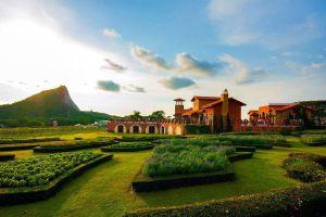 Silverlake-Vineyard-Chonburi-Thailand-02.jpg