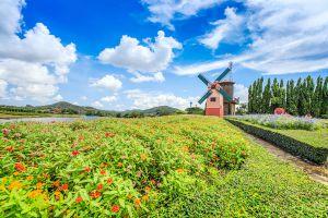 Silverlake-Vineyard-Chonburi-Thailand-03.jpg