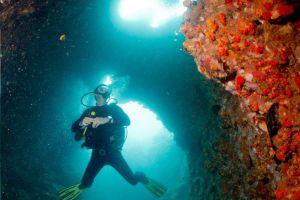 Simple-Life-Divers-Koh-Tao-Thailand-002.jpg