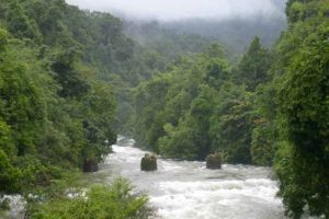 Sri-Phang-Nga-National-Park-Thailand-001.jpg
