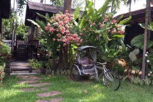 Sri-Ping-Resort-Chiang-Mai-Thailand-Garden.jpg