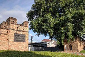 Suan-Dok-Gate-Chiang-Mai-Thailand-03.jpg