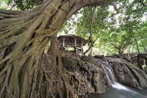 Sup-Langka-Wildlife-Sanctuary-Lopburi-Thailand-03.jpg