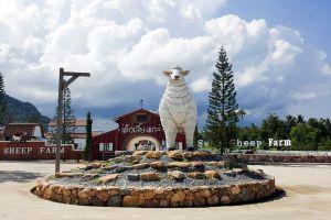Swiss-Sheep-Farm-Pattaya-Chonburi-Thailand-05.jpg