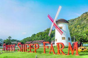 Swiss-Sheep-Farm-Pattaya-Chonburi-Thailand-07.jpg