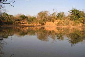 Ta-Phraya-National-Park-Sakaew-Thailand-006.jpg