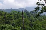 Tai-Rom-Yen-National-Park-Suratthani-Thailand-03.jpg
