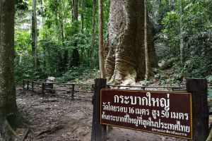 Taksin-Maharat-National-Park-Tak-Thailand-04.jpg