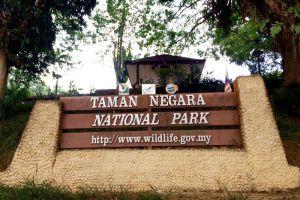 Taman-Negara-National-Park-Kelantan-Malaysia-004.jpg