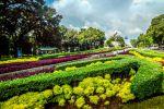 Taman-Suropati-Jakarta-Indonesia-001.jpg