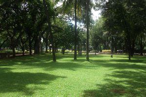 Taman-Suropati-Jakarta-Indonesia-005.jpg