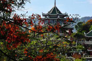Taoist-Temple-Cebu-Philippines-005.jpg