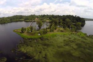Tasek-Merimbun-Heritage-Park-Tutong-Brunei-001.jpg