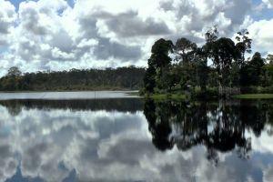 Tasek-Merimbun-Heritage-Park-Tutong-Brunei-002.jpg