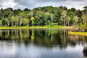 Tasek-Merimbun-Heritage-Park-Tutong-Brunei-003.jpg