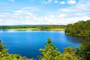 Tasek-Merimbun-Heritage-Park-Tutong-Brunei-004.jpg