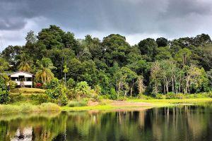 Tasek-Merimbun-Heritage-Park-Tutong-Brunei-005.jpg