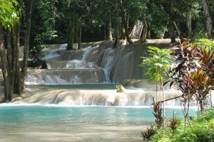 Tat-Sae-Waterfalls-Luang-Prabang-Laos-007.jpg