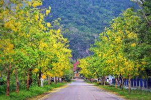 Tham-Sao-Hin-Payanak-Chiang-Rai-Thailand-07.jpg