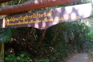 Than-Bok-Khorani-National-Park-Krabi-Thailand-002.jpg