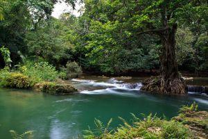 Than-Bok-Khorani-National-Park-Krabi-Thailand-004.jpg
